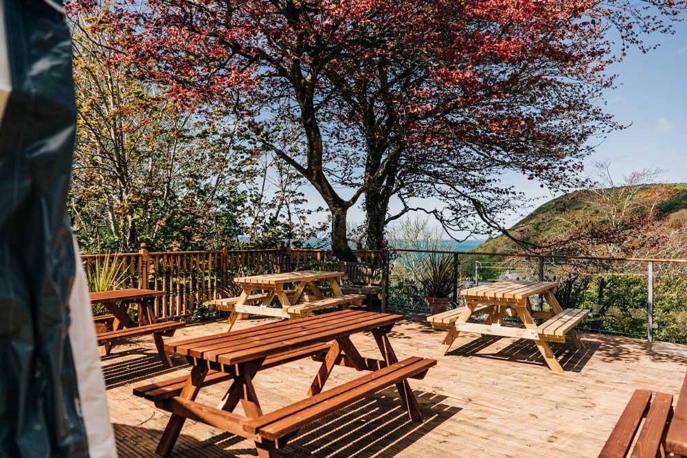 Bryn Berwyn Country House - relax outside