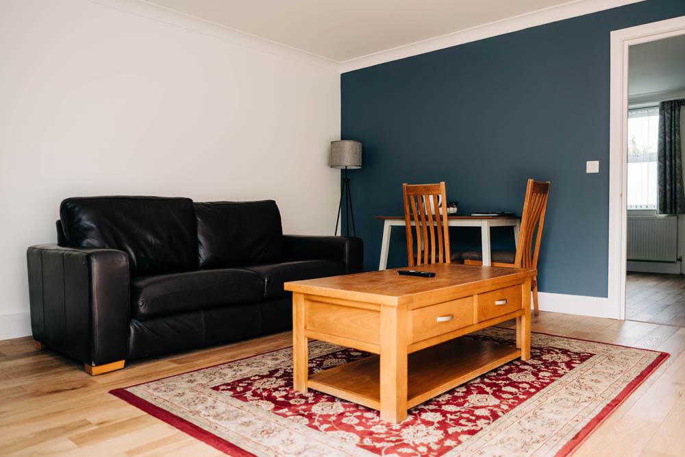 Bryn Berwyn Ground Floor Suite -  living room 1